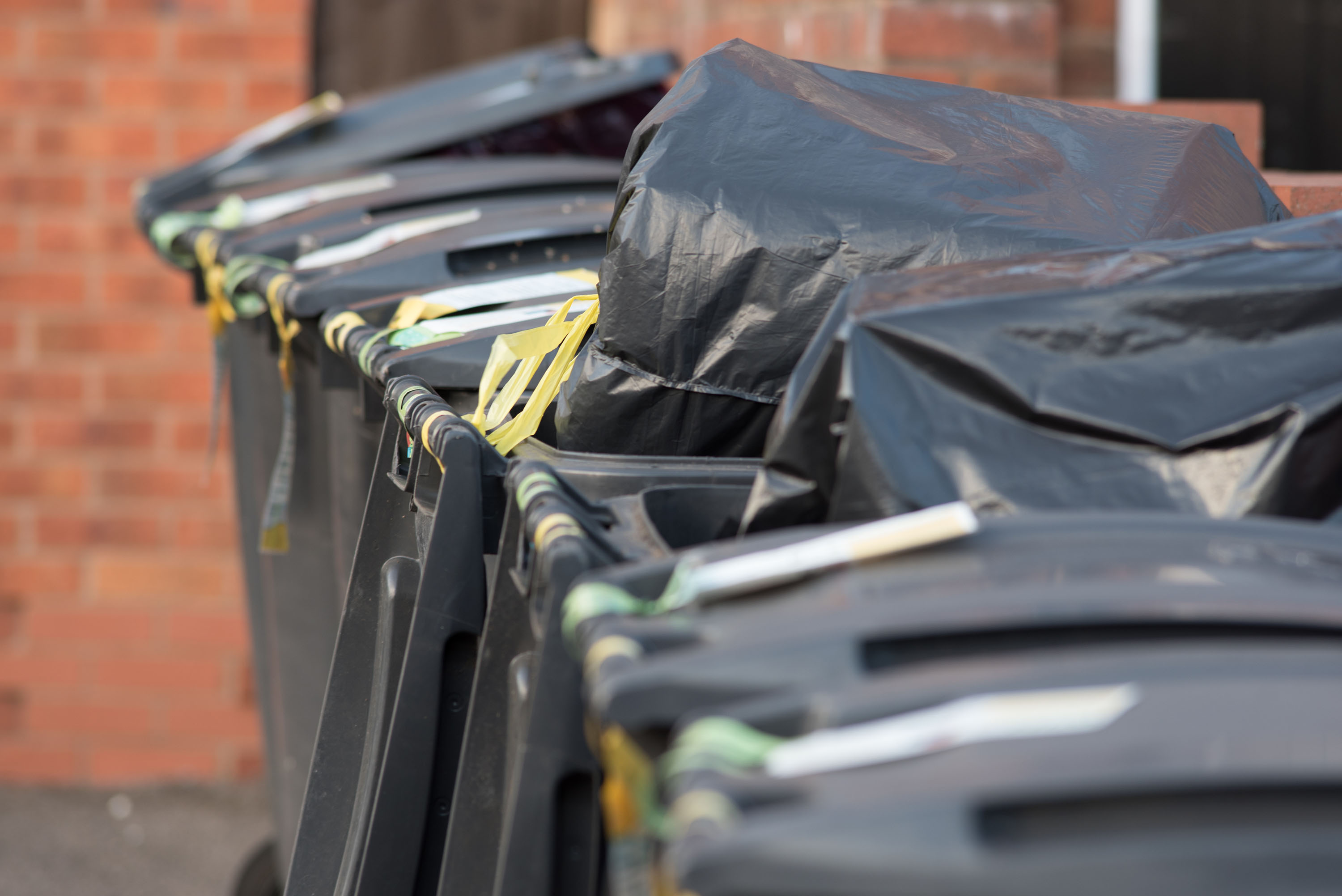 Waste collection is a prominent service delivered by local authorities