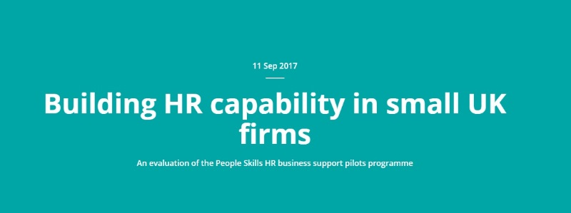 Building HR Capability In Small UK Firms