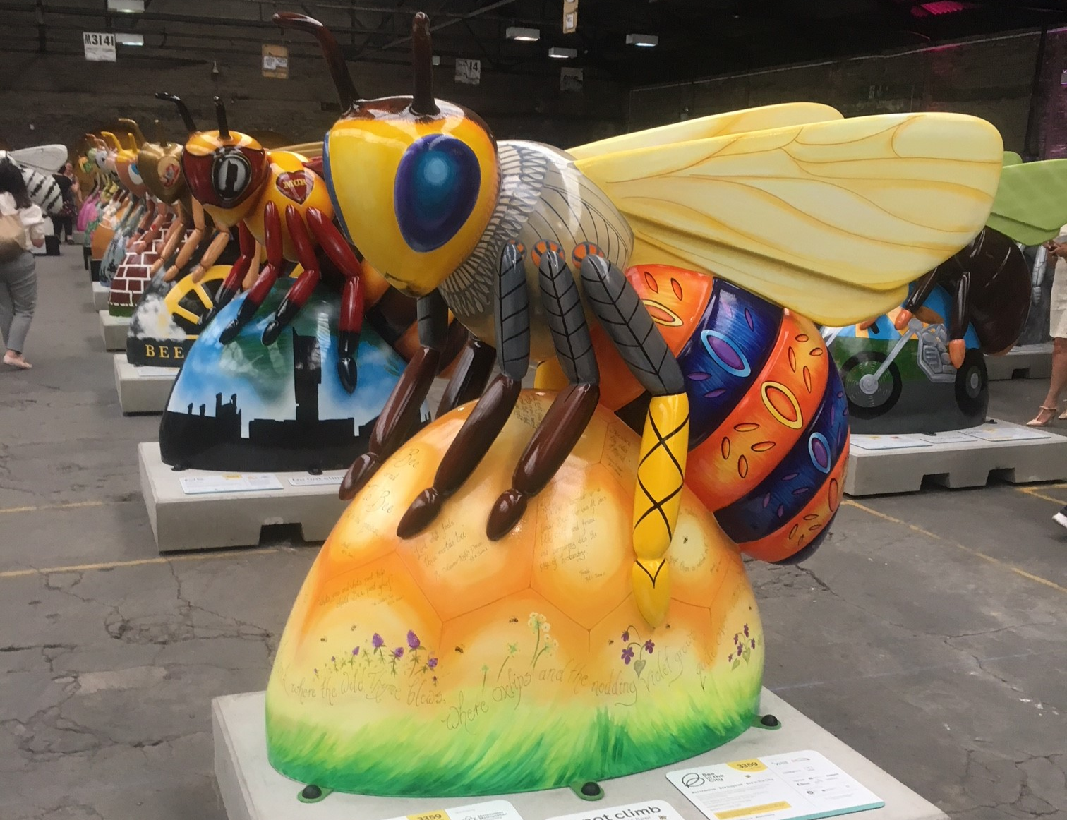 First glimpse of our Shakespeare bee!