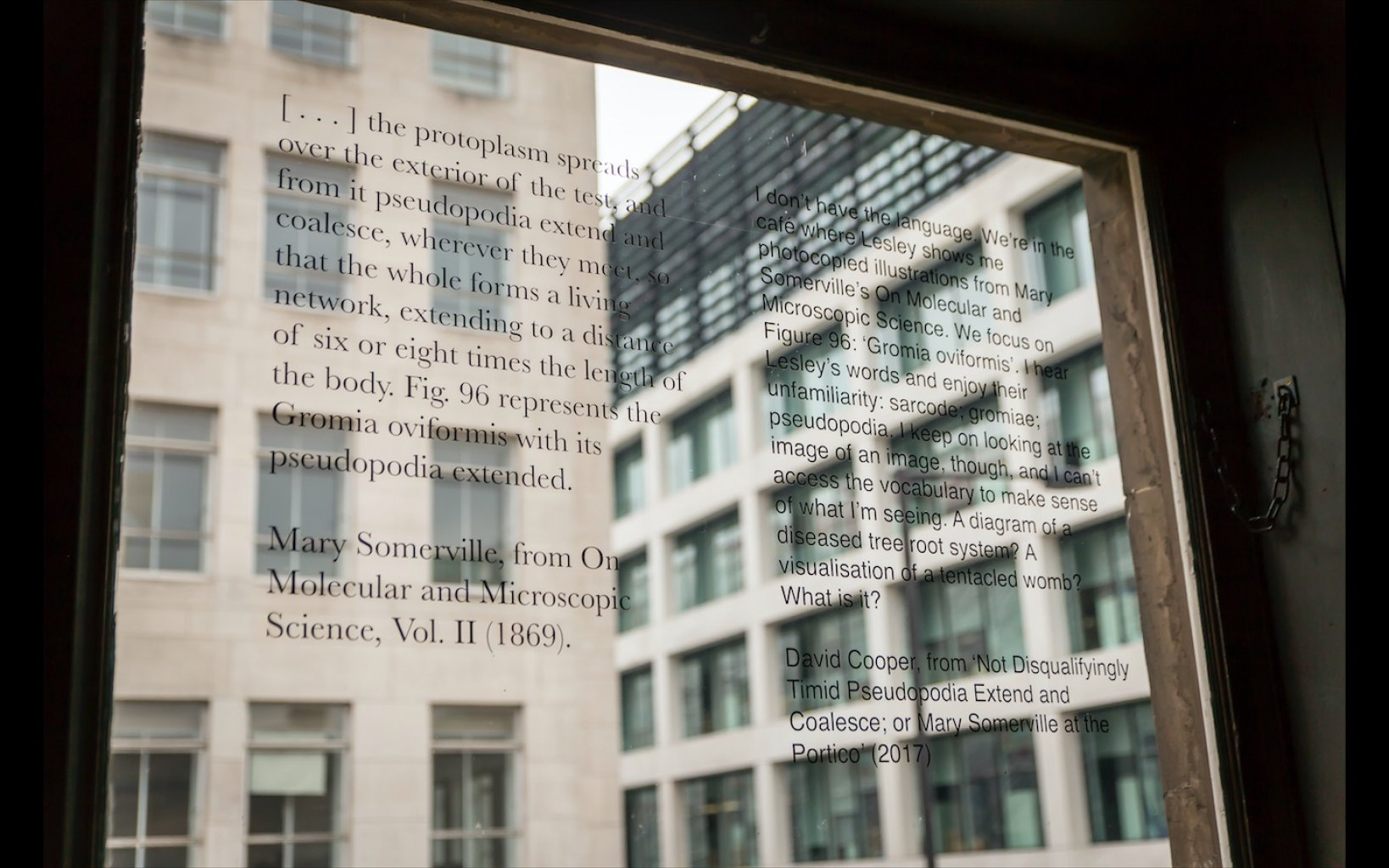 Window texts by Mary Somerville, 1869 and David Cooper, 2017.